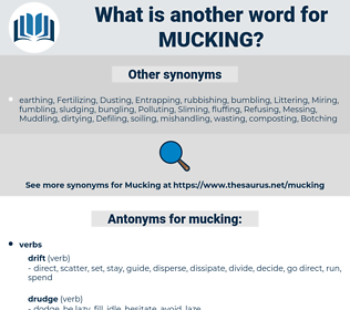 mucking, synonym mucking, another word for mucking, words like mucking, thesaurus mucking