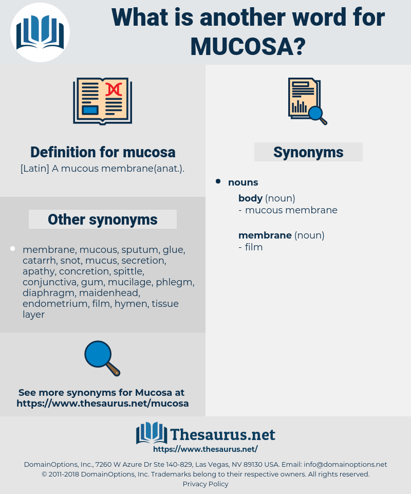 mucosa, synonym mucosa, another word for mucosa, words like mucosa, thesaurus mucosa