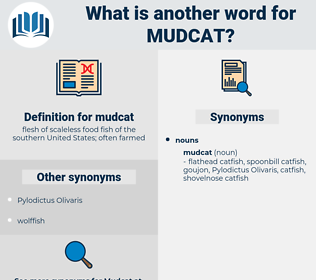 mudcat, synonym mudcat, another word for mudcat, words like mudcat, thesaurus mudcat