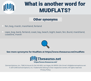 mudflats, synonym mudflats, another word for mudflats, words like mudflats, thesaurus mudflats