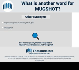 mugshot, synonym mugshot, another word for mugshot, words like mugshot, thesaurus mugshot