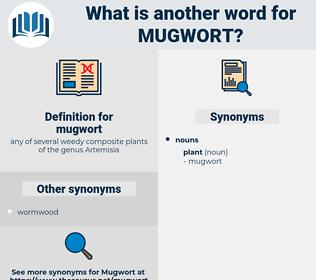 mugwort, synonym mugwort, another word for mugwort, words like mugwort, thesaurus mugwort
