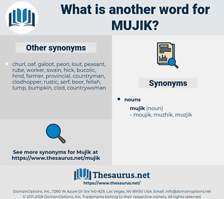 mujik, synonym mujik, another word for mujik, words like mujik, thesaurus mujik