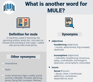 mule, synonym mule, another word for mule, words like mule, thesaurus mule