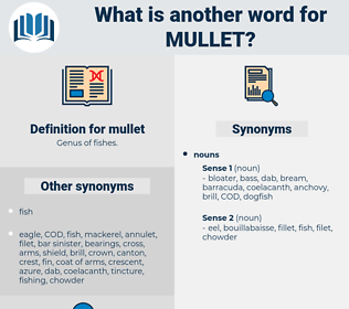 mullet, synonym mullet, another word for mullet, words like mullet, thesaurus mullet