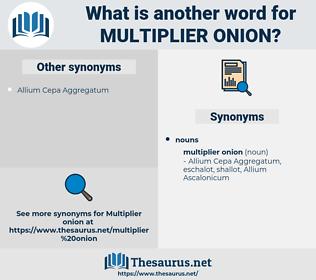 multiplier onion, synonym multiplier onion, another word for multiplier onion, words like multiplier onion, thesaurus multiplier onion