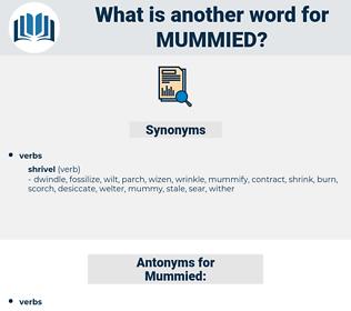 Mummied, synonym Mummied, another word for Mummied, words like Mummied, thesaurus Mummied