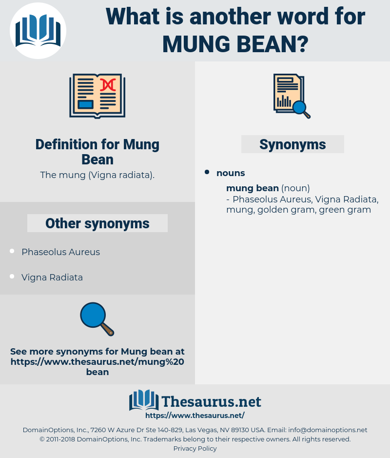 Mung Bean, synonym Mung Bean, another word for Mung Bean, words like Mung Bean, thesaurus Mung Bean