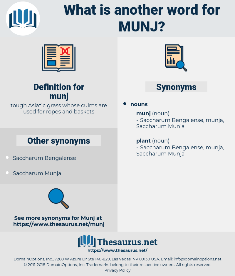 munj, synonym munj, another word for munj, words like munj, thesaurus munj