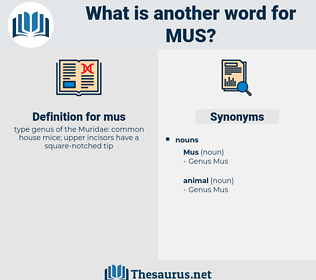mus, synonym mus, another word for mus, words like mus, thesaurus mus