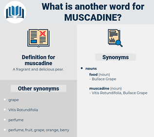 muscadine, synonym muscadine, another word for muscadine, words like muscadine, thesaurus muscadine