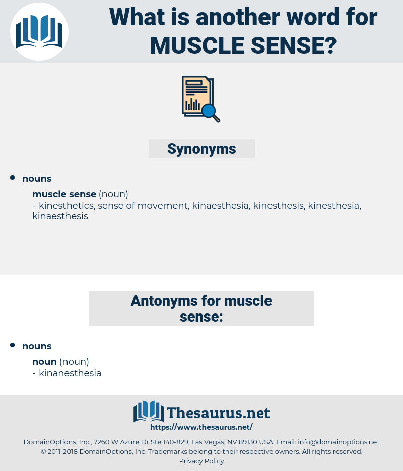 muscle sense, synonym muscle sense, another word for muscle sense, words like muscle sense, thesaurus muscle sense