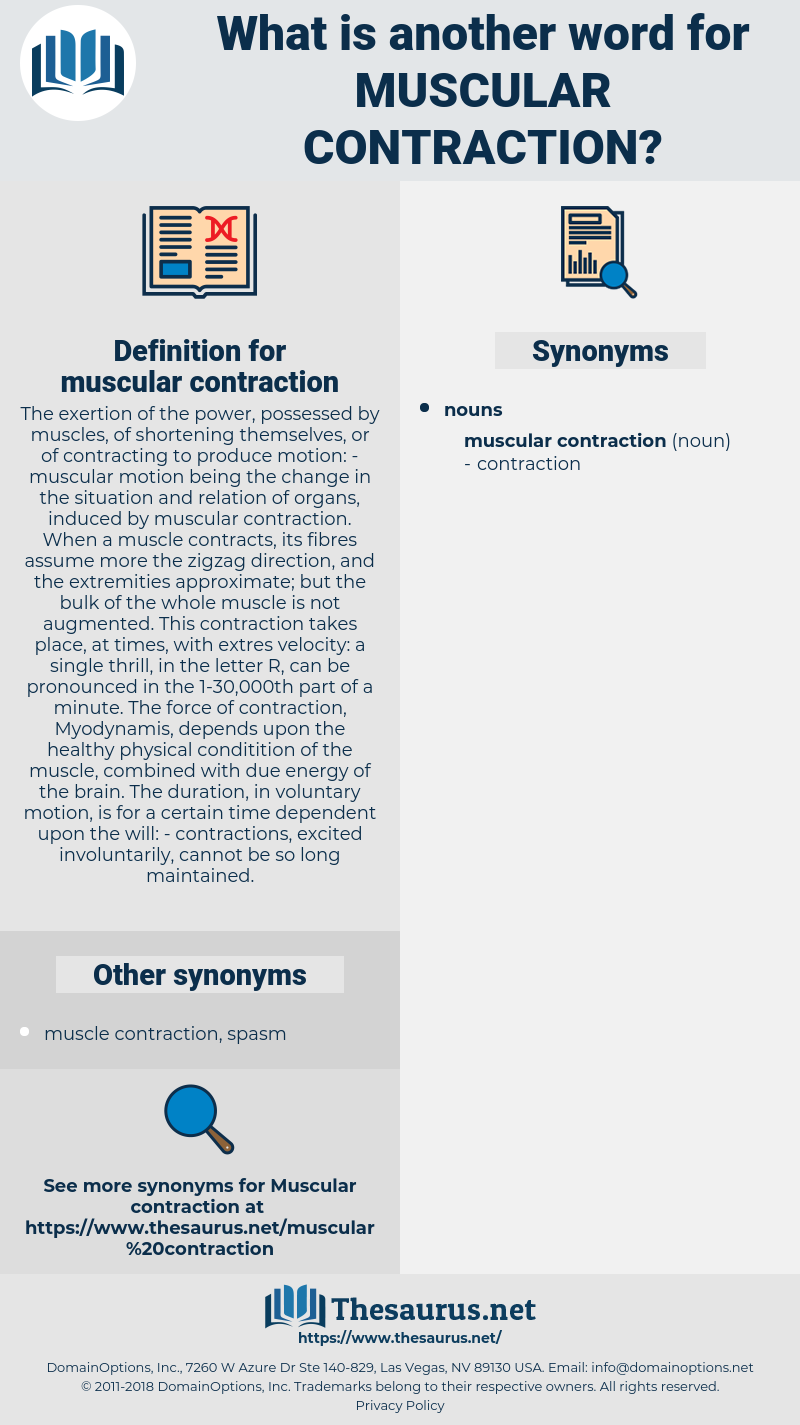 muscular contraction, synonym muscular contraction, another word for muscular contraction, words like muscular contraction, thesaurus muscular contraction