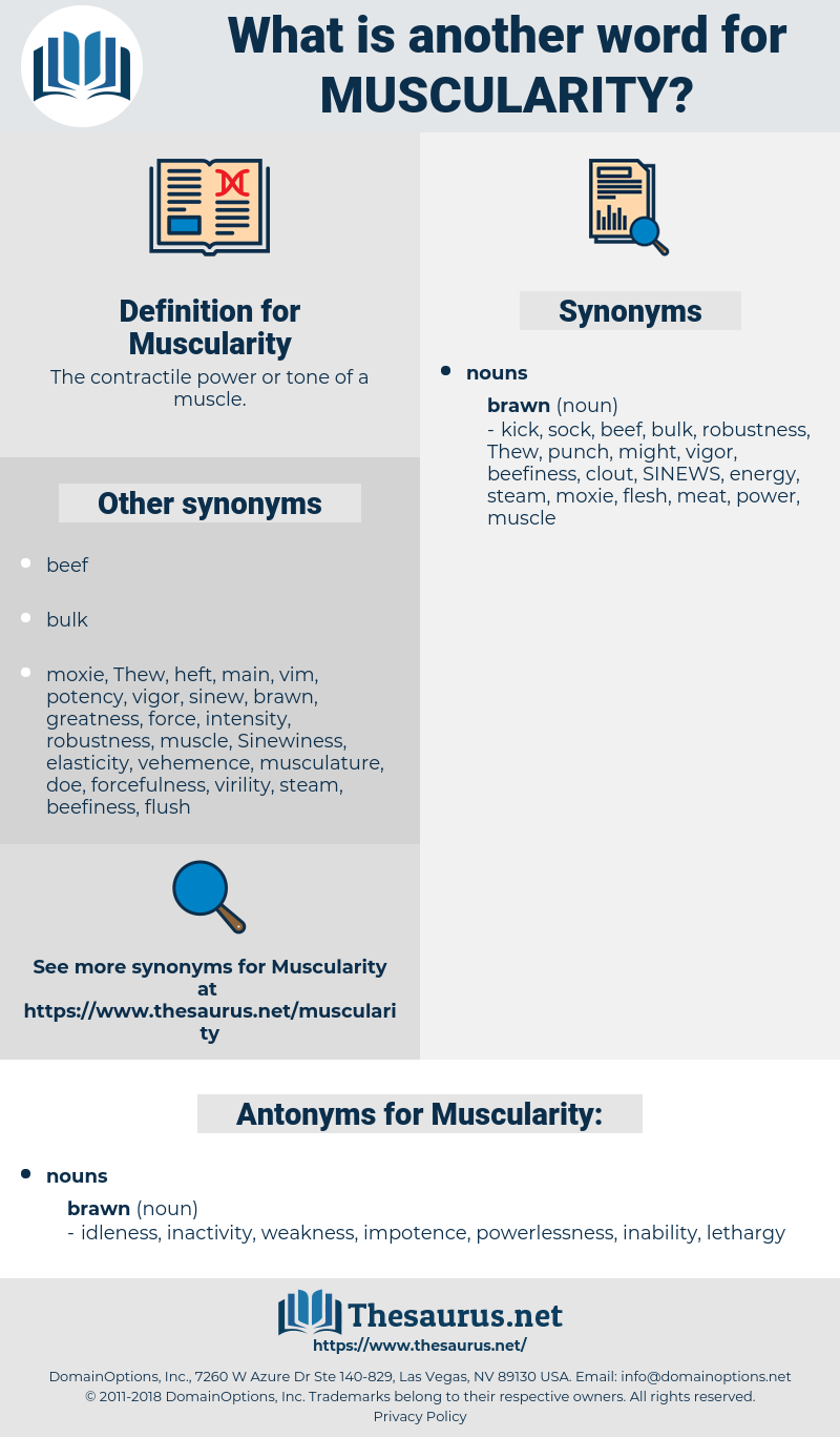 Muscularity, synonym Muscularity, another word for Muscularity, words like Muscularity, thesaurus Muscularity