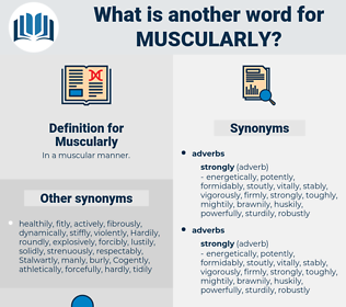 Muscularly, synonym Muscularly, another word for Muscularly, words like Muscularly, thesaurus Muscularly