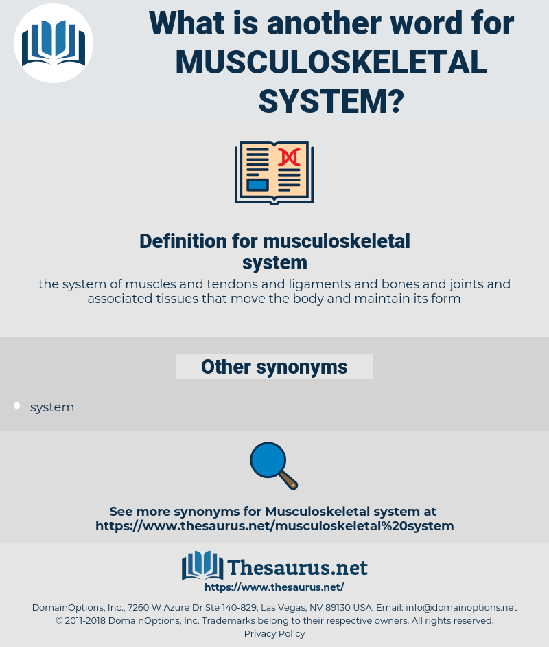 musculoskeletal system, synonym musculoskeletal system, another word for musculoskeletal system, words like musculoskeletal system, thesaurus musculoskeletal system