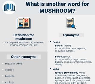 mushroom, synonym mushroom, another word for mushroom, words like mushroom, thesaurus mushroom