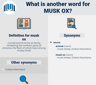 musk ox, synonym musk ox, another word for musk ox, words like musk ox, thesaurus musk ox