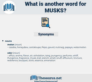 musks, synonym musks, another word for musks, words like musks, thesaurus musks