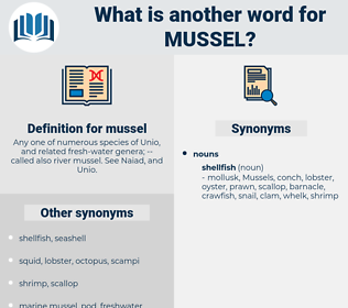 mussel, synonym mussel, another word for mussel, words like mussel, thesaurus mussel