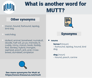 mutt, synonym mutt, another word for mutt, words like mutt, thesaurus mutt