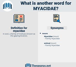 myacidae, synonym myacidae, another word for myacidae, words like myacidae, thesaurus myacidae