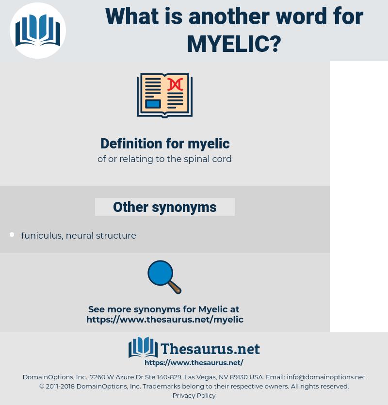 myelic, synonym myelic, another word for myelic, words like myelic, thesaurus myelic