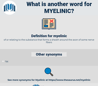 myelinic, synonym myelinic, another word for myelinic, words like myelinic, thesaurus myelinic