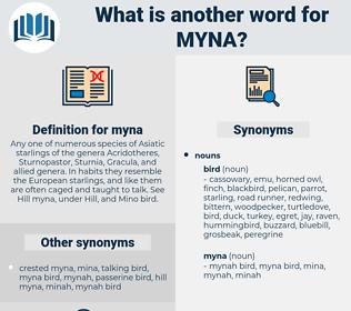 myna, synonym myna, another word for myna, words like myna, thesaurus myna