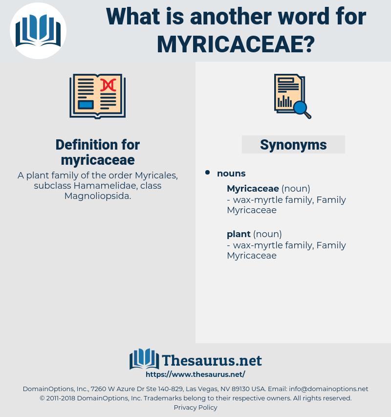 myricaceae, synonym myricaceae, another word for myricaceae, words like myricaceae, thesaurus myricaceae
