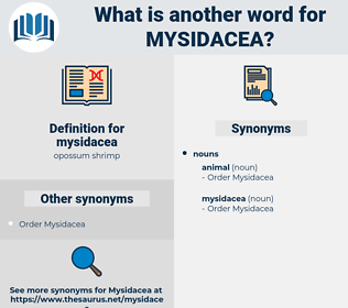 mysidacea, synonym mysidacea, another word for mysidacea, words like mysidacea, thesaurus mysidacea