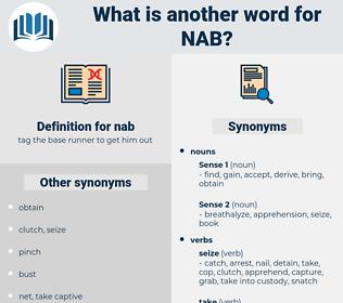 nab, synonym nab, another word for nab, words like nab, thesaurus nab