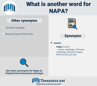 napa, synonym napa, another word for napa, words like napa, thesaurus napa