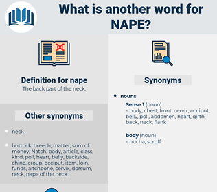 nape, synonym nape, another word for nape, words like nape, thesaurus nape