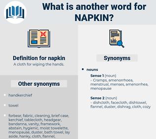 napkin, synonym napkin, another word for napkin, words like napkin, thesaurus napkin