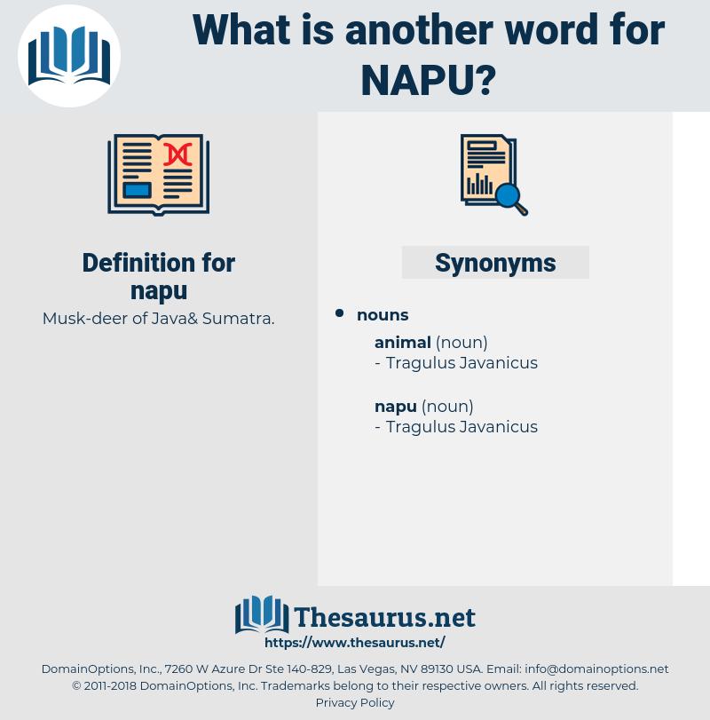 napu, synonym napu, another word for napu, words like napu, thesaurus napu