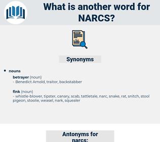 narcs, synonym narcs, another word for narcs, words like narcs, thesaurus narcs
