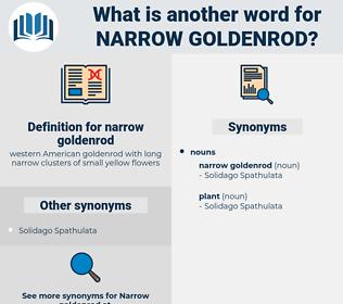 narrow goldenrod, synonym narrow goldenrod, another word for narrow goldenrod, words like narrow goldenrod, thesaurus narrow goldenrod