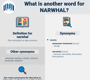 narwhal, synonym narwhal, another word for narwhal, words like narwhal, thesaurus narwhal