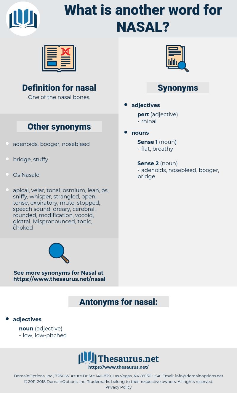 nasal, synonym nasal, another word for nasal, words like nasal, thesaurus nasal