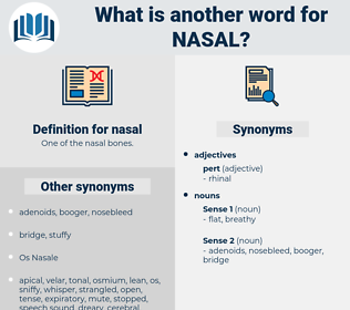 nasal, synonym nasal, another word for nasal, words like nasal, thesaurus nasal