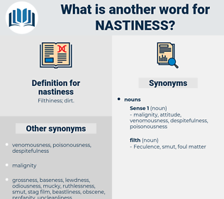 nastiness, synonym nastiness, another word for nastiness, words like nastiness, thesaurus nastiness