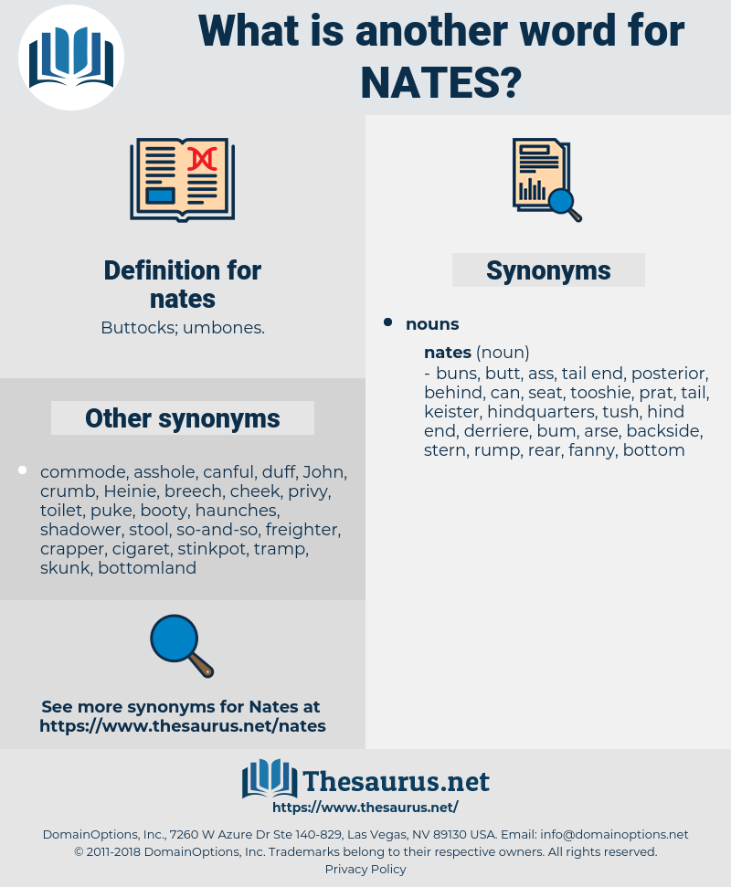 nates, synonym nates, another word for nates, words like nates, thesaurus nates