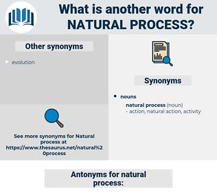 natural process, synonym natural process, another word for natural process, words like natural process, thesaurus natural process