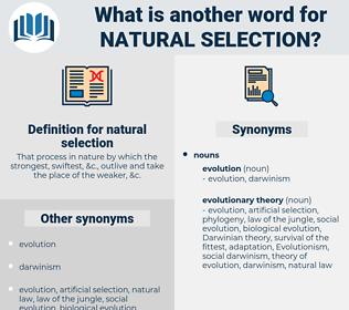 natural selection, synonym natural selection, another word for natural selection, words like natural selection, thesaurus natural selection