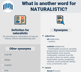 naturalistic, synonym naturalistic, another word for naturalistic, words like naturalistic, thesaurus naturalistic