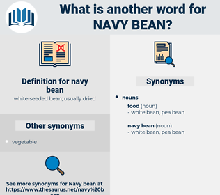 navy bean, synonym navy bean, another word for navy bean, words like navy bean, thesaurus navy bean