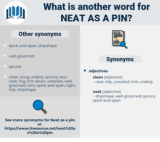 neat as a pin, synonym neat as a pin, another word for neat as a pin, words like neat as a pin, thesaurus neat as a pin