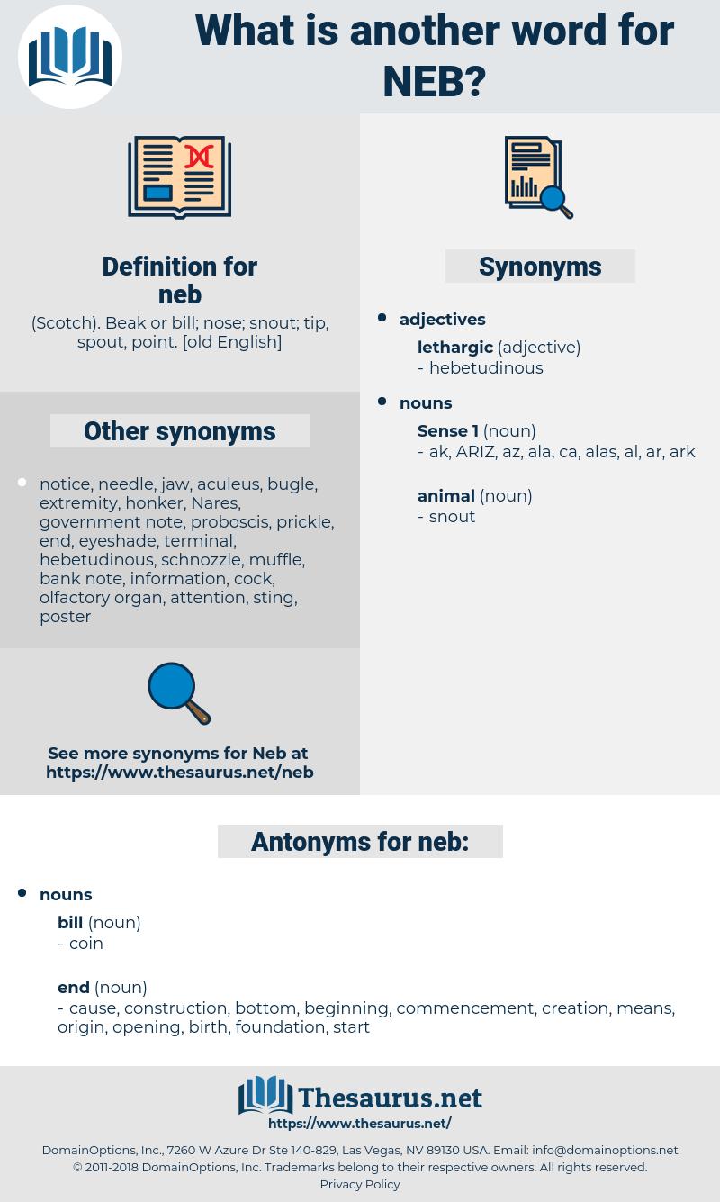 neb, synonym neb, another word for neb, words like neb, thesaurus neb