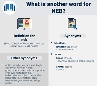 neb, synonym neb, another word for neb, words like neb, thesaurus neb